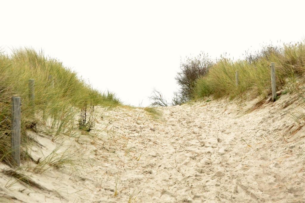 rostock-am-meer06