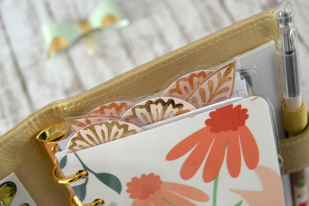2015-08-05-kikkik-gold-small-setup04