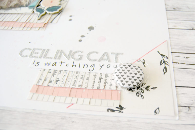 layout-ceiling-cat02