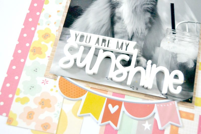 sbw_jennifer-albrecht_you-are-my-sunshine04
